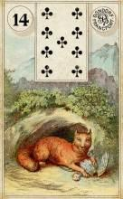 Lenormand Fox Card Meaning