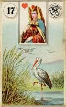 Lenormand Stork Card Meaning