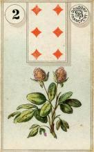 Lenormand Clover Card Meaning