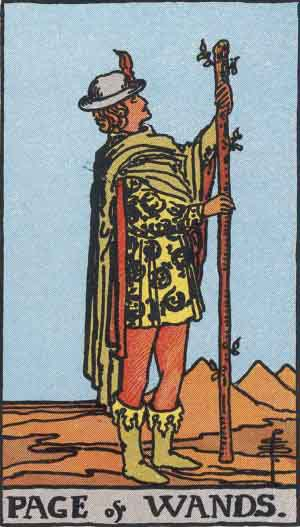 The Page of Wands Tarot Card